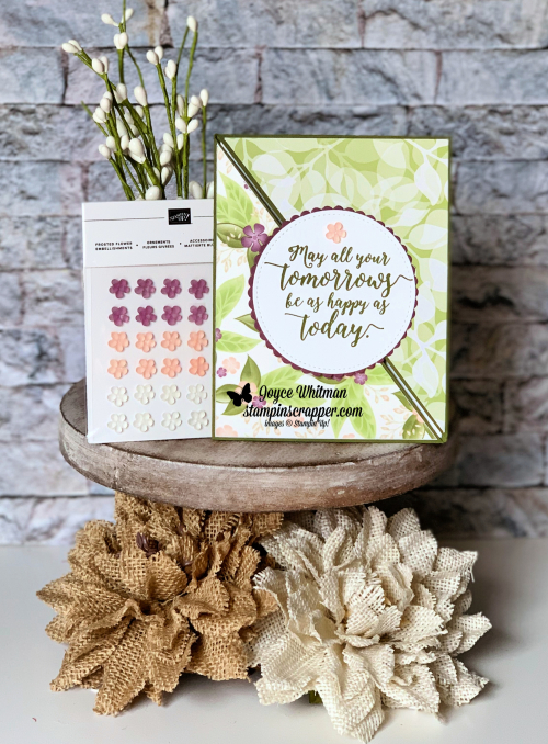 Stampin Up, Stampin' Up! Colorful Seasons stamp set #143726, Floral Romance Specialty Deigner series Paper #148586, Frosted Flower Embellishments #148782, Layering Circle Framelits 141705, Stitched Shapes Framelits #145372, created by Stampin Scrapper, for more cards, gifts, ideas, scrapbooking and 3D projects go to stampinscrapper.com, Joyce Whitman