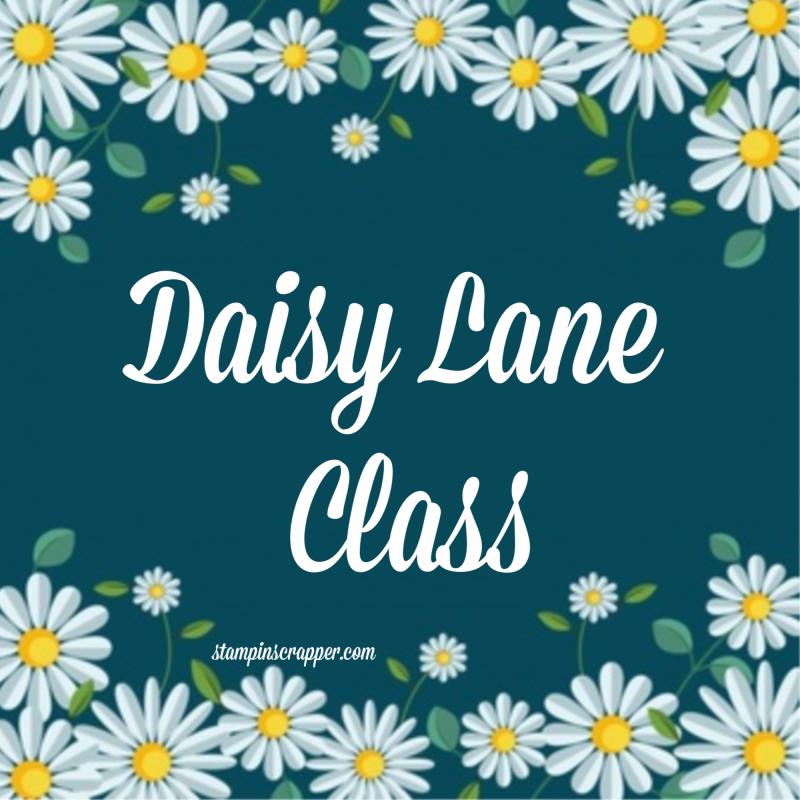 Daisy Lane Product Class 2