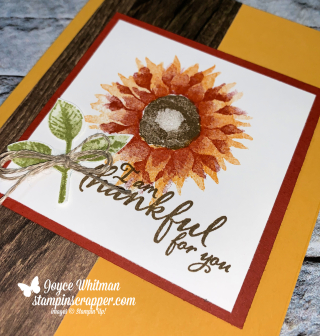 Stampin Up, Stampin' Up! Painted Harvest, Fall Friday 2019, Thankful for you, created by Stampin Scrapper, for more cards, gifts,. ideas, scrapbooking and 3D projects, go to stampinscrapper.com, Joyce Whitman