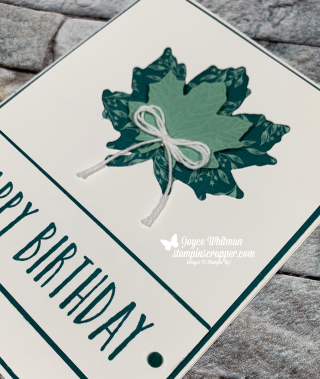 Stampin Up, Stampin' Up!, Perennial Birthday, Gathered Leaves dies, Come To Gather Designer Series Paper, created by Stampin Scrapper, paper crafting, birthday, leaves, fall, for more cards, gifts, ideas, scrapbooking or 3D projects go to stampinscrapper.com, Joyce Whitman