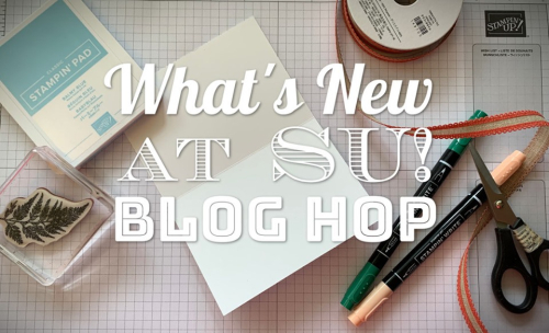 What's New At SU #2