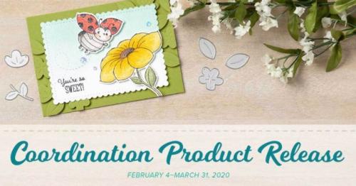 Coordination-promotion-Feb-4-2020-640x335