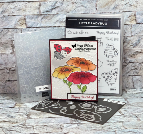 Stampin Up, Stampin' Up!, Little Ladybug, Ladybug dies, What's New At SU blog hop, birthday, Stone embossing folder, Stampin' Blends, created by Stampin Scrapper.  For more cards, gifts, ideas, scrapbooking and 3D projects go to stampinscrapper.com, Joyce Whitman
