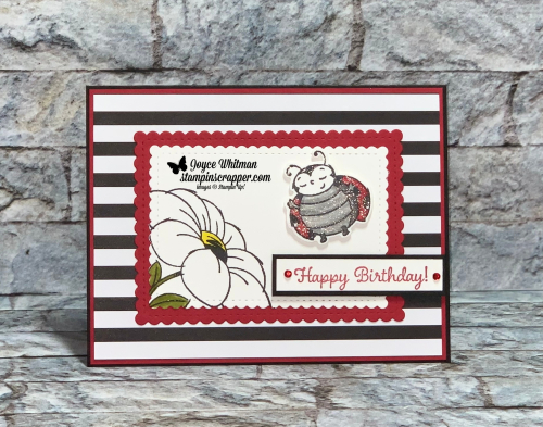 Stampin Up, Stampin' Up!, Little Ladybug stamp set, Ladybug dies, Sweet Stitched Dies, Tulip Builder punch, Golden Honey designer series paper, created by Stampin Scrapper. For more cards, gifts, ideas, scrapbooking and 3D projects go to stampinscrapper.com, Joyce Whitman