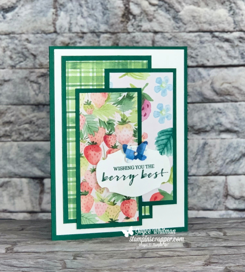 Stampin Up, Stampin' Up!, Sale-A-Bration, New At SU Blog Hop, Berry Blessings stamp set, Berry Delightful designer series paper, Butterfly Duet punch, Story Label punch.  Created by Stampin Scrapper.  For more cards, gifts, ideas, scrapbooking and 3D projects go to stampinscrapper.com, Joyce Whitman