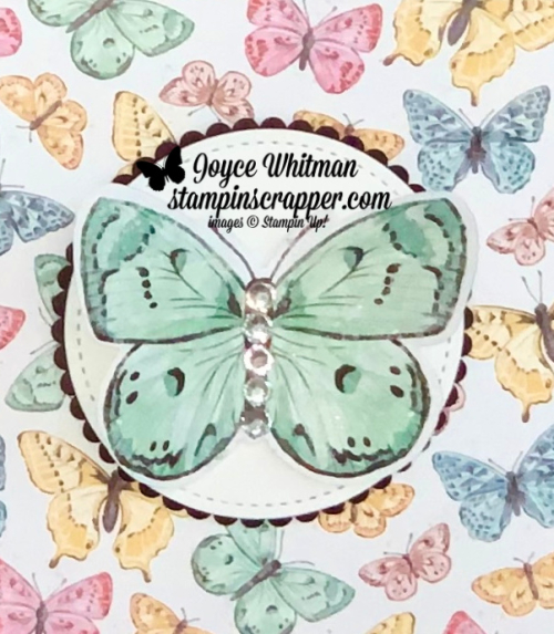 Stampin Up, Stampin' Up!, Butterfly Brilliance stamp set, Brilliant Wings dies, Butterfly Brilliance bundle, tissue box, 3D project, home decor, created by Stampin Scrapper.  For more cards, gifts, ideas, scrapbooking and 3D projects go to stampinscrapper.com, Joyce Whitman