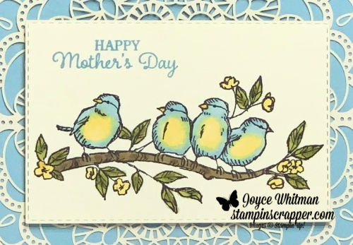 Stampin Up, Stampin' Up!, Free As A Bird, Timeless Tulips,  Bird Ballad Laser Cut Cards and Tin, Stampin Blends, Mother's Day, created by Stampin Scrapper.  For more cards, gifts, ideas, scrapbooking and 3D projects go to stampinscrapper.com, Joyce Whitman