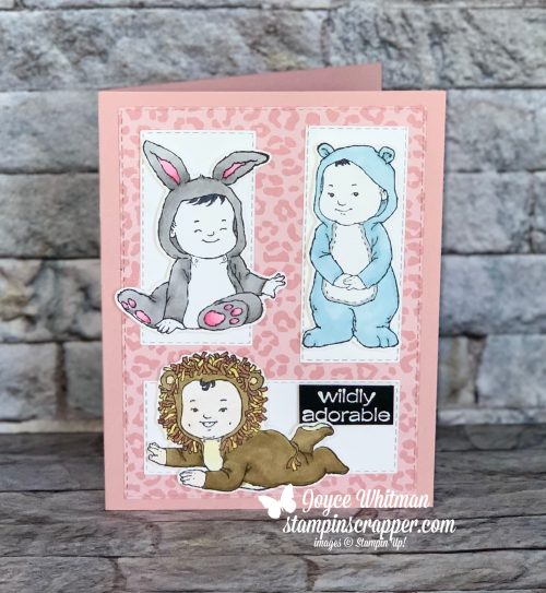 Stampin Up, Stampin' Up!, Wildly Adorable stamp set, Stampin Blends, Baby Card, Bunny, Bear, Lion, Pattern Party designer series paper, embossing, embossing powder, Stitched Rectangle dies, created by Stampin Scrapper.  For more cards, gifts, ideas, scrapbooking and 3D projects go to stampinscrapper.com, Joyce Whitman