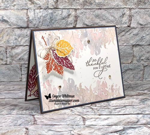 Stampin Up, Stampin' Up!, Gorgeous Leaves, Pretty Pumpkins stamp sets. Intricate Leaves dies, New at SU blog hop, Fall, Thank you card, created by Stampin Scrapper.  For more cards, gifts, ideas, scrapbooking and 3D projects go to stampinscrapper.com, Joyce Whitman