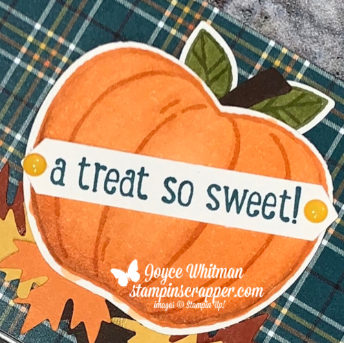 Stampin Up, Stampin' Up!, Harvest Hello, Banner Year, Rectangle Tins, Plaid Tidings, Apple Builder Punch, Autumn Punch Pack created by Stampin Scrapper.  For more cards, gifts, ideas, scrapbooking and 3D projects, go to stampinscrapper.com, Joyce Whitman