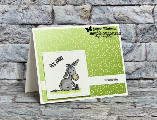 Stampin Up, Stampin' Up!, Darling Donkeys stamp set, 2021 Sale-A-Bration, Birthday cards, coloring, blends, Oh So Ombre designer series paper, created by Stampin Scrapper.  For more cards, gifts, ideas, scrapbooking or 3D projects go to stampinscrapper.com, Joyce Whitman