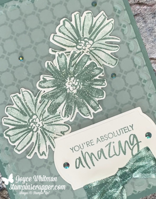 Stampin Up, Stampin' Up!, Color & Contour Bundle, Color & Contour stamp set, Scalloped Contour dies, 2021-2023 In Color designer series paper, 2021-2023 In Color Jewels, You're Amazing, Painted Labels dies, created by Stampin Scrapper, for more cards, gifts, ideas, scrapbooking and 3D projects go to stampinscrapper.com, Joyce Whitman