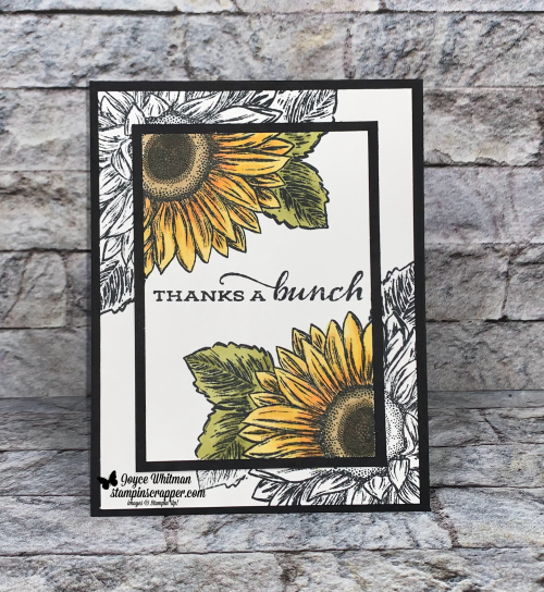 Stampin Up, Stampin' Up!, Celebrate Sunflowers stamp set. spotlight technique, masking technique, Stampin Blends, Sunflowers dies, Fall Friday 2021 Week #7, created by Stampin Scrapper. For more cards, gifts, ideas, scrapbooking and 3D projects go to stampinscrapper.com, Joyce Whitman
